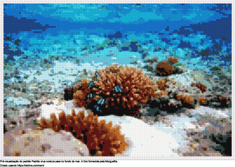 Desenhos corais de ponto-cruz gratuitos