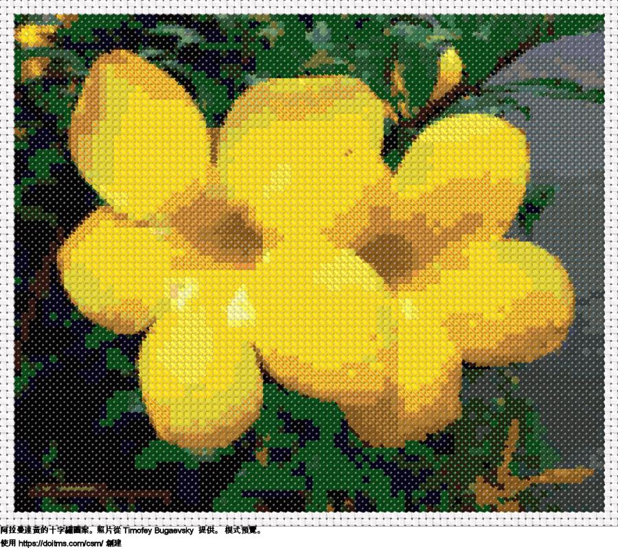 免費 花卉 十字縫設計