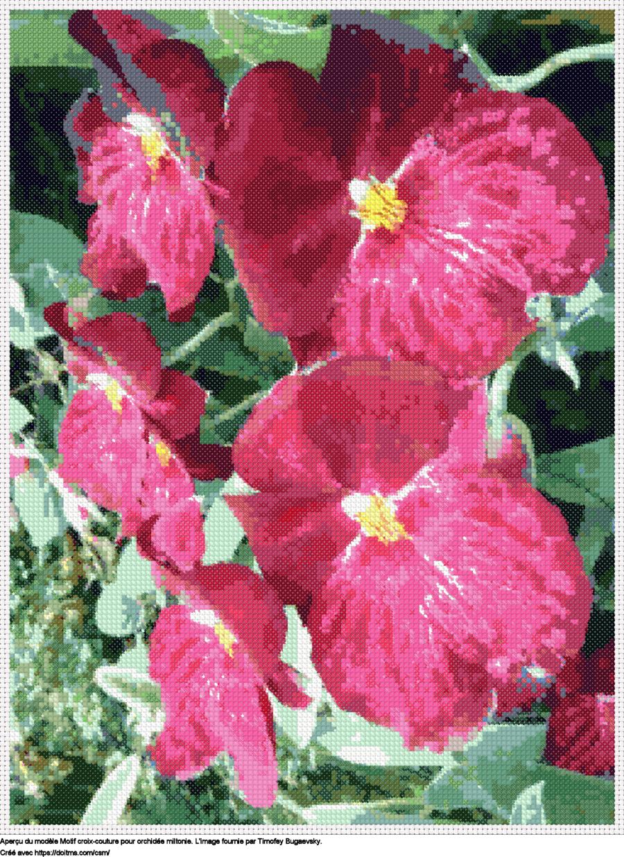 Motif de point de croix Fleurs gratuit
