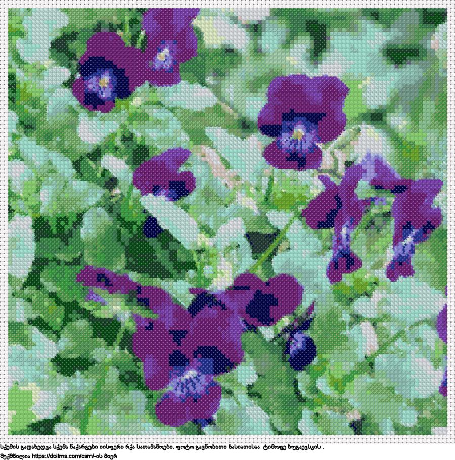 ყვავილები