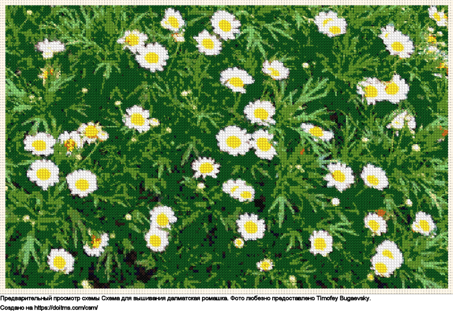 Бесплатная схема Цветы для вышивания крестиком