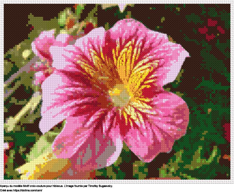 Motif de point de croix Hibiscus gratuit