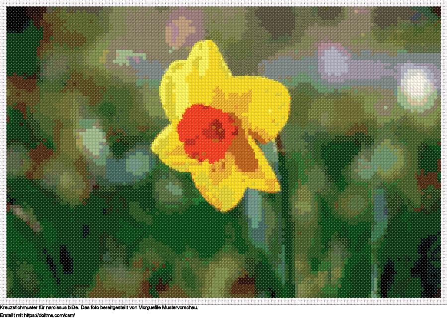 FreieNarcissus Blüte Kreuzstich-Design