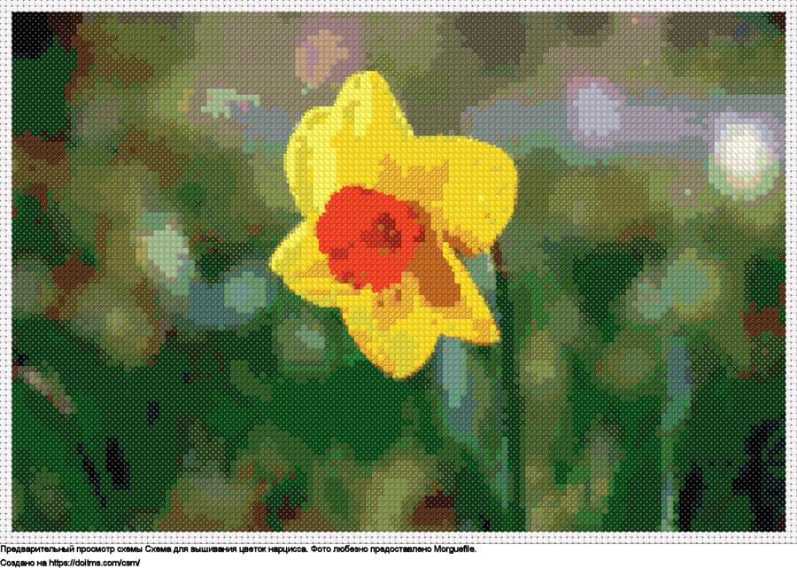 Бесплатная схема Цветок нарцисса для вышивания крестиком