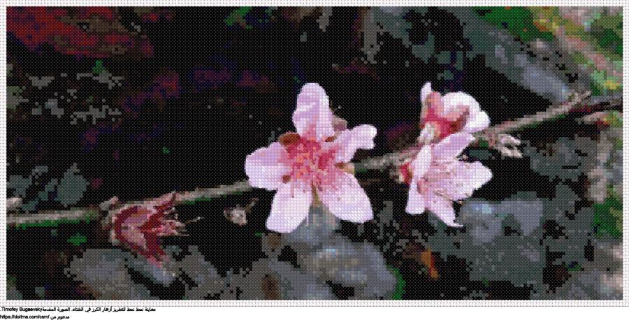 .زهرة الكرزنمط عبر خياطة ل