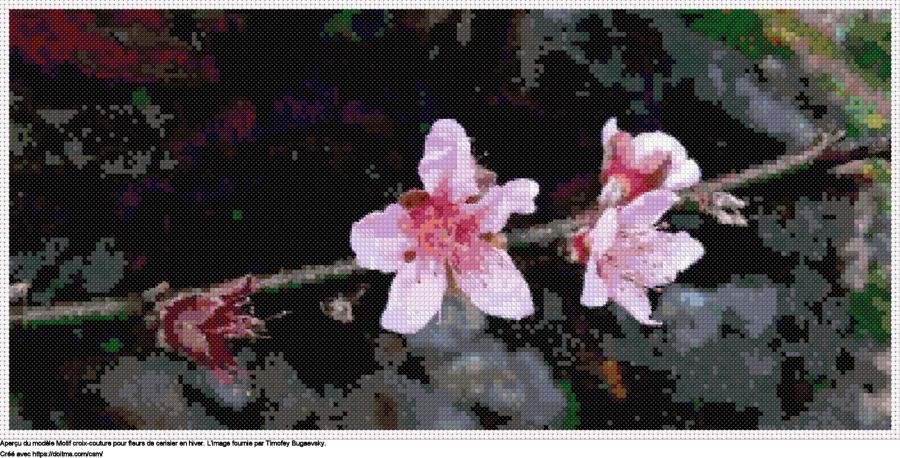 Motif de point de croix Fleur de cerisier gratuit