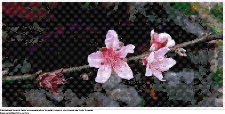 Desenhos Flor de cerejeira de ponto-cruz gratuitos