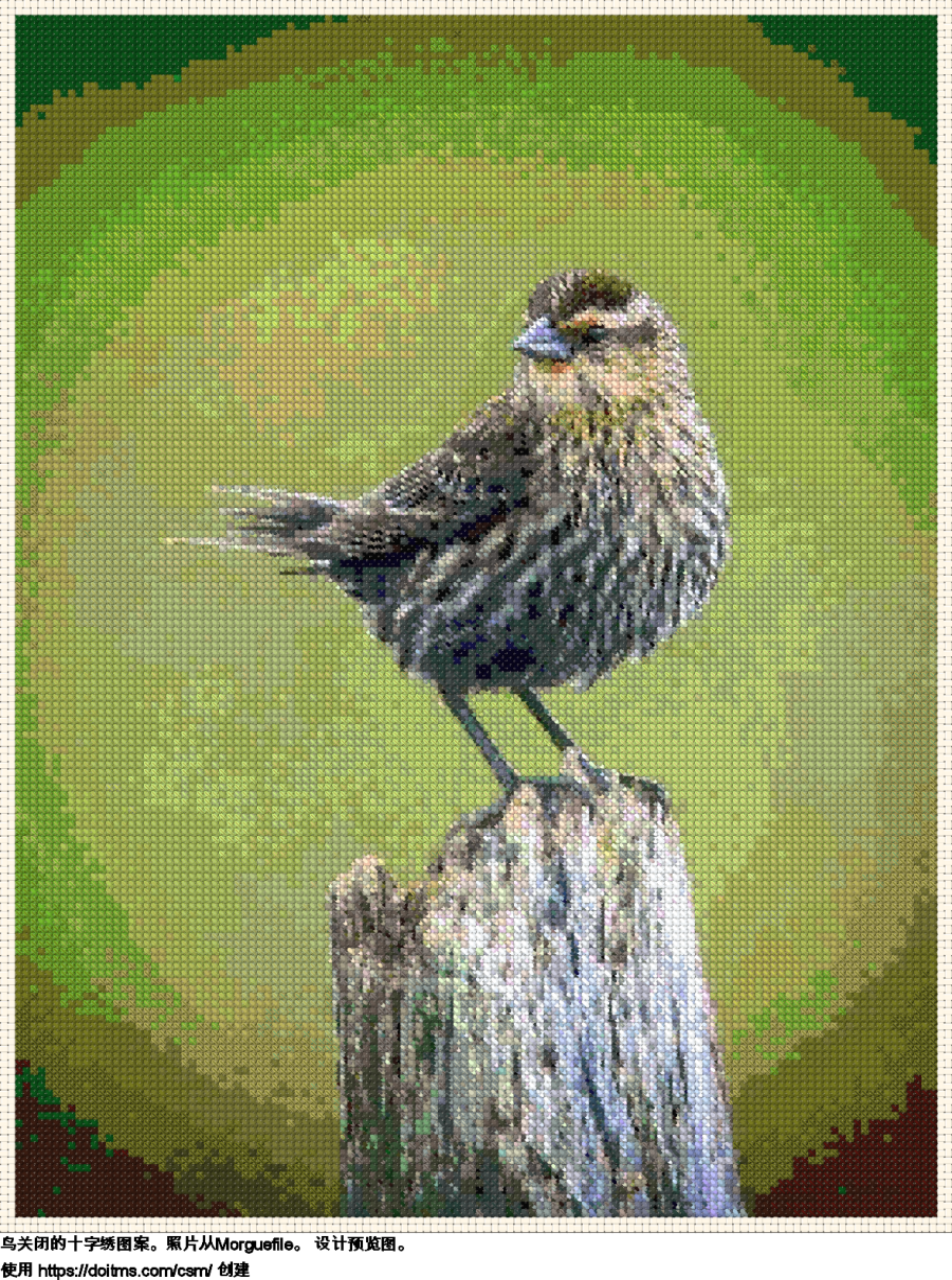 免费 小鸟 十字绣设计
