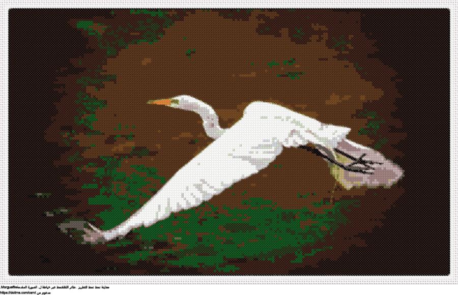 .طائر اللقلقنمط عبر خياطة ل
