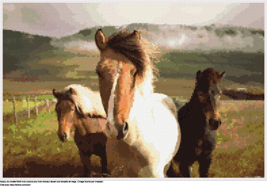 Motif de point de croix Les chevaux gratuit