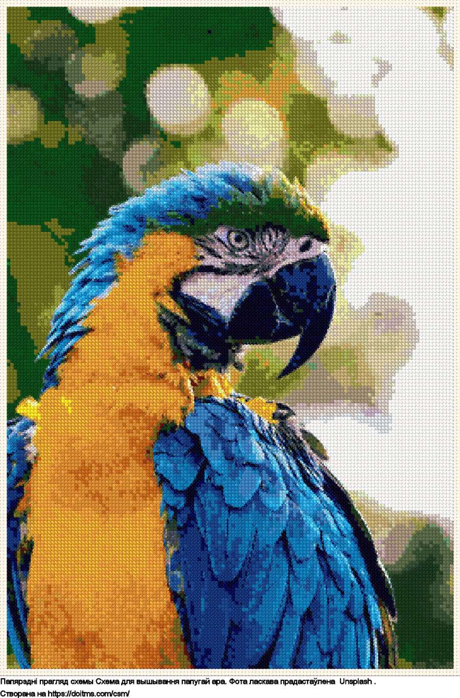 папугай Ара