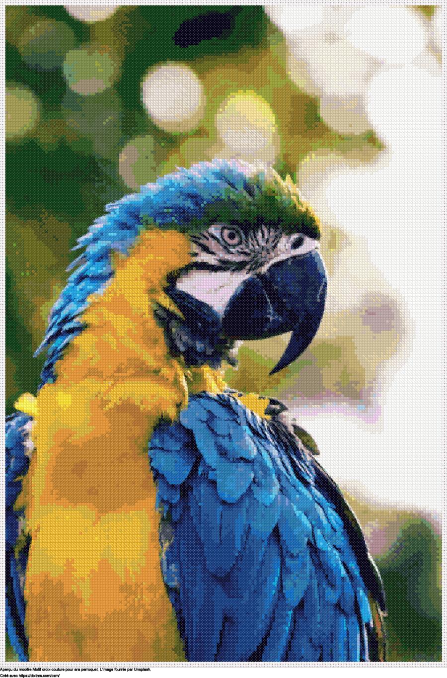 Motif de point de croix Ara perroquet gratuit