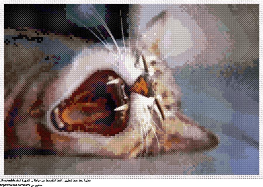 .القط التثاؤبنمط عبر خياطة ل