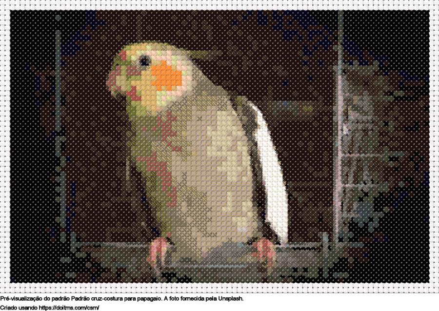 Desenhos Papagaio de ponto-cruz gratuitos