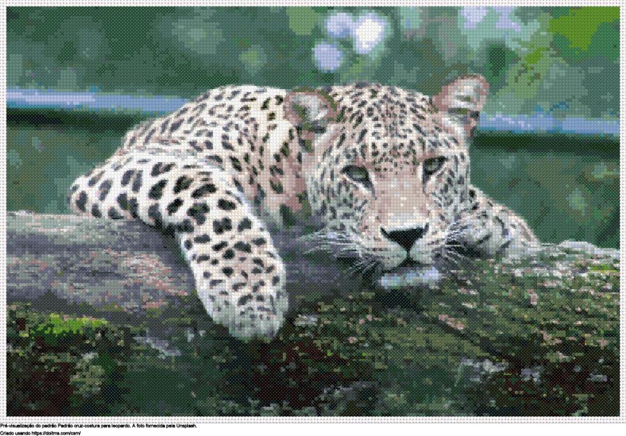 Desenhos Leopardo de ponto-cruz gratuitos