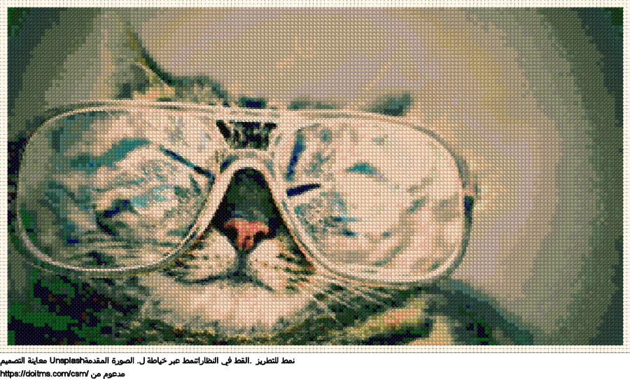 .القط في النظاراتنمط عبر خياطة ل