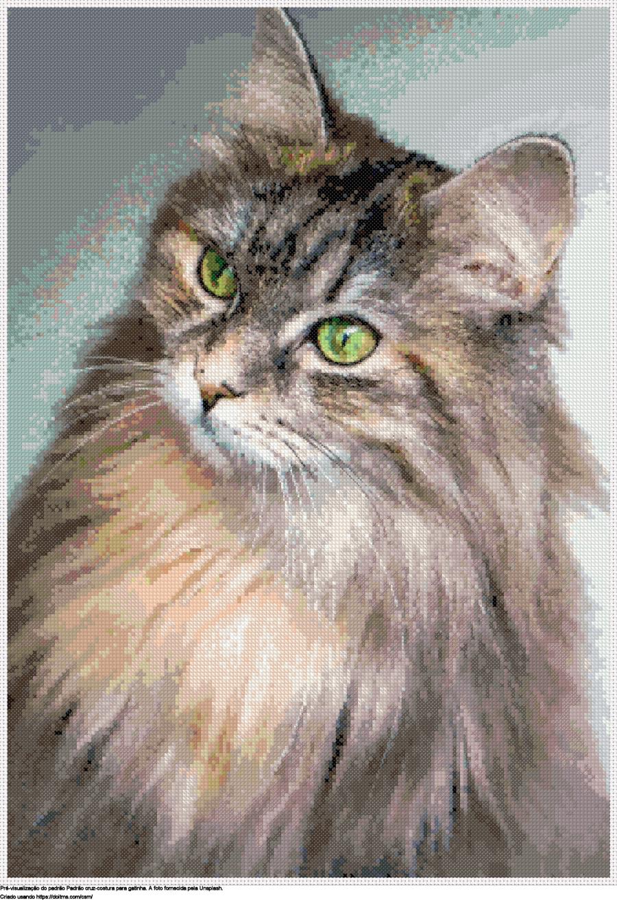 Desenhos gatinha de ponto-cruz gratuitos