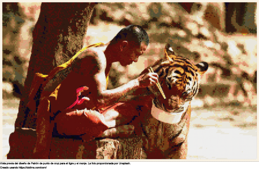 El tigre y el monje