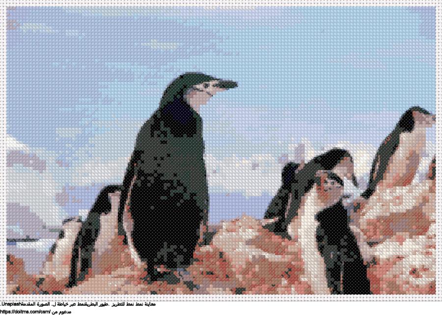 .طيور البطريقنمط عبر خياطة ل
