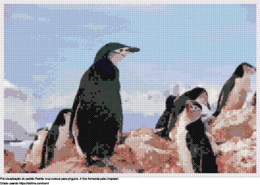 Desenhos pinguins de ponto-cruz gratuitos