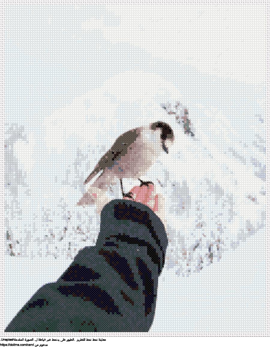 .الطيور على يدنمط عبر خياطة ل