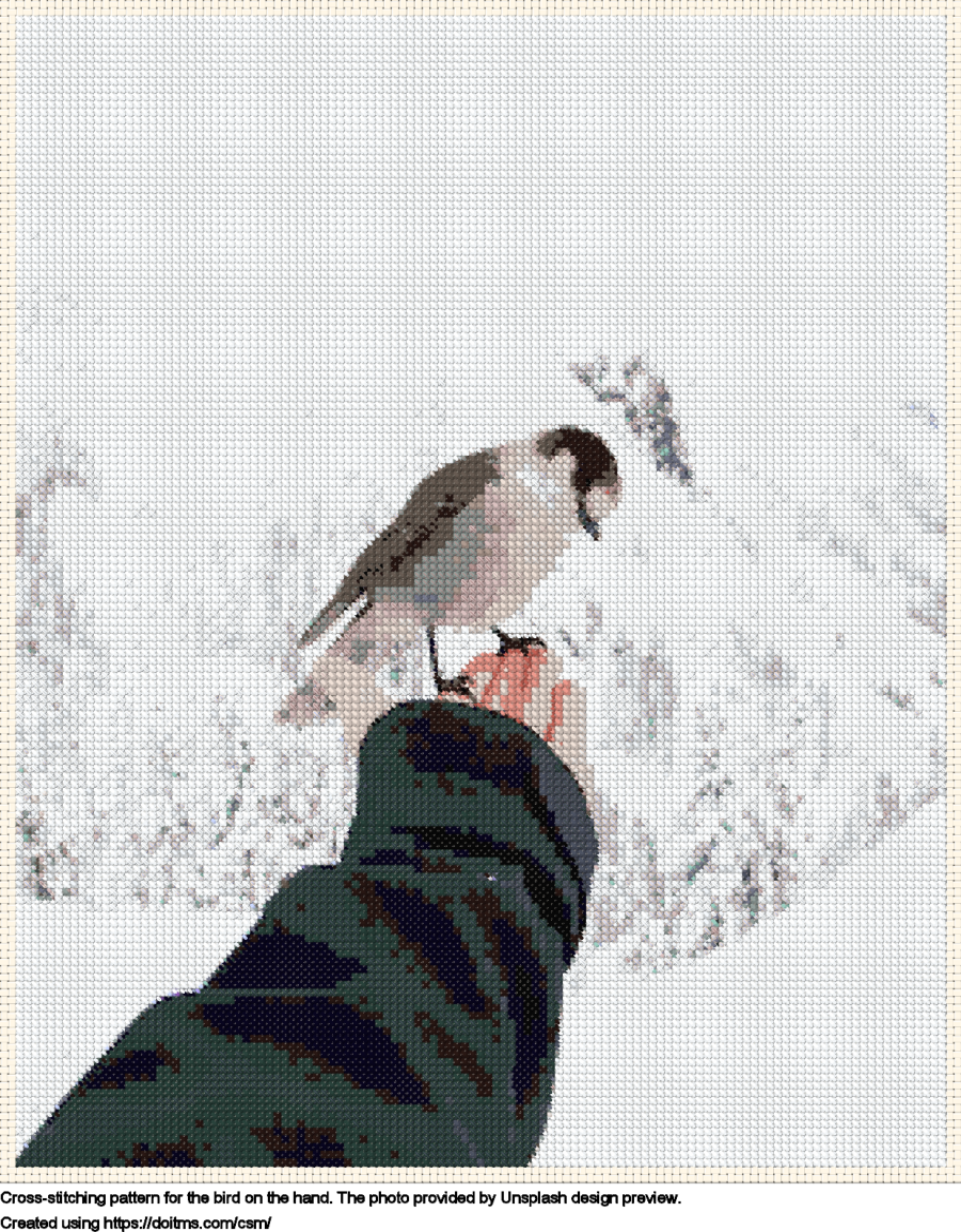 The bird on the hand