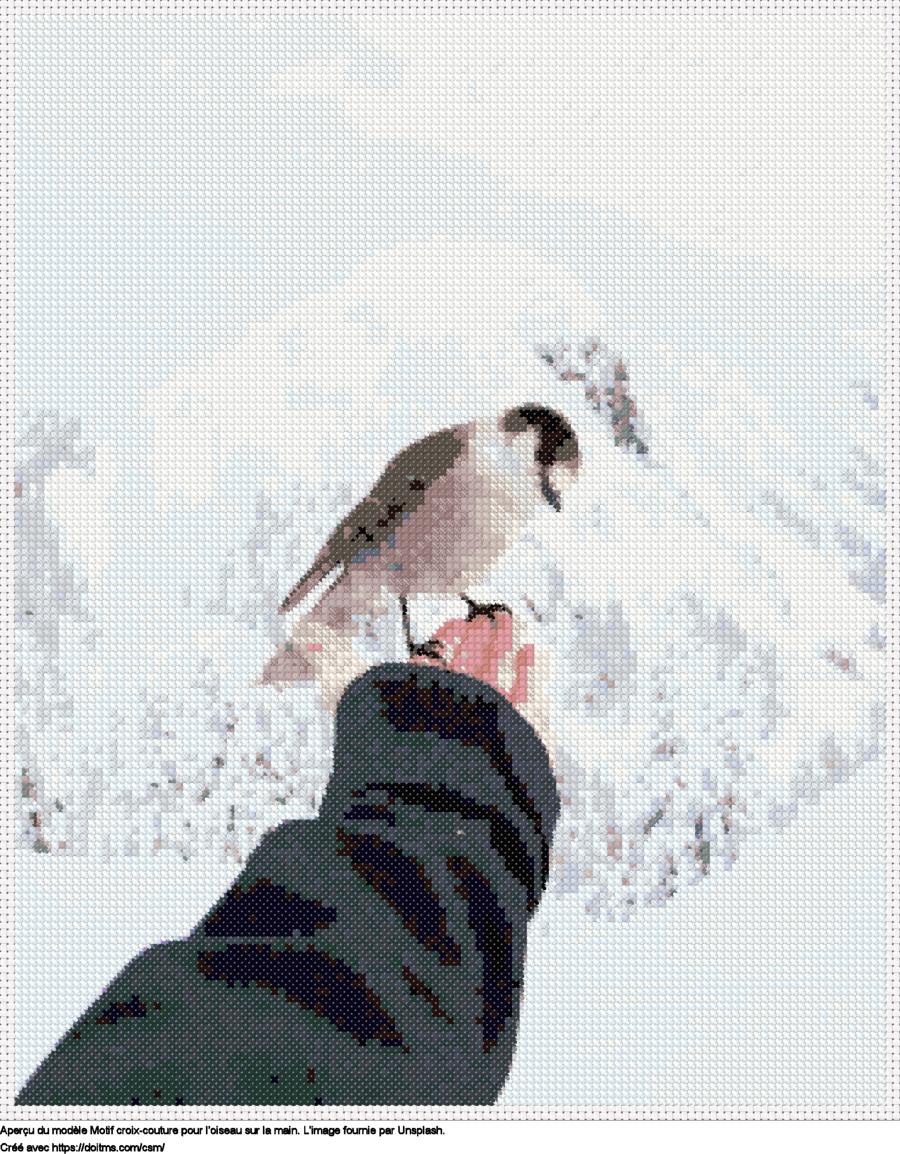 Motif de point de croix L'oiseau sur la main gratuit