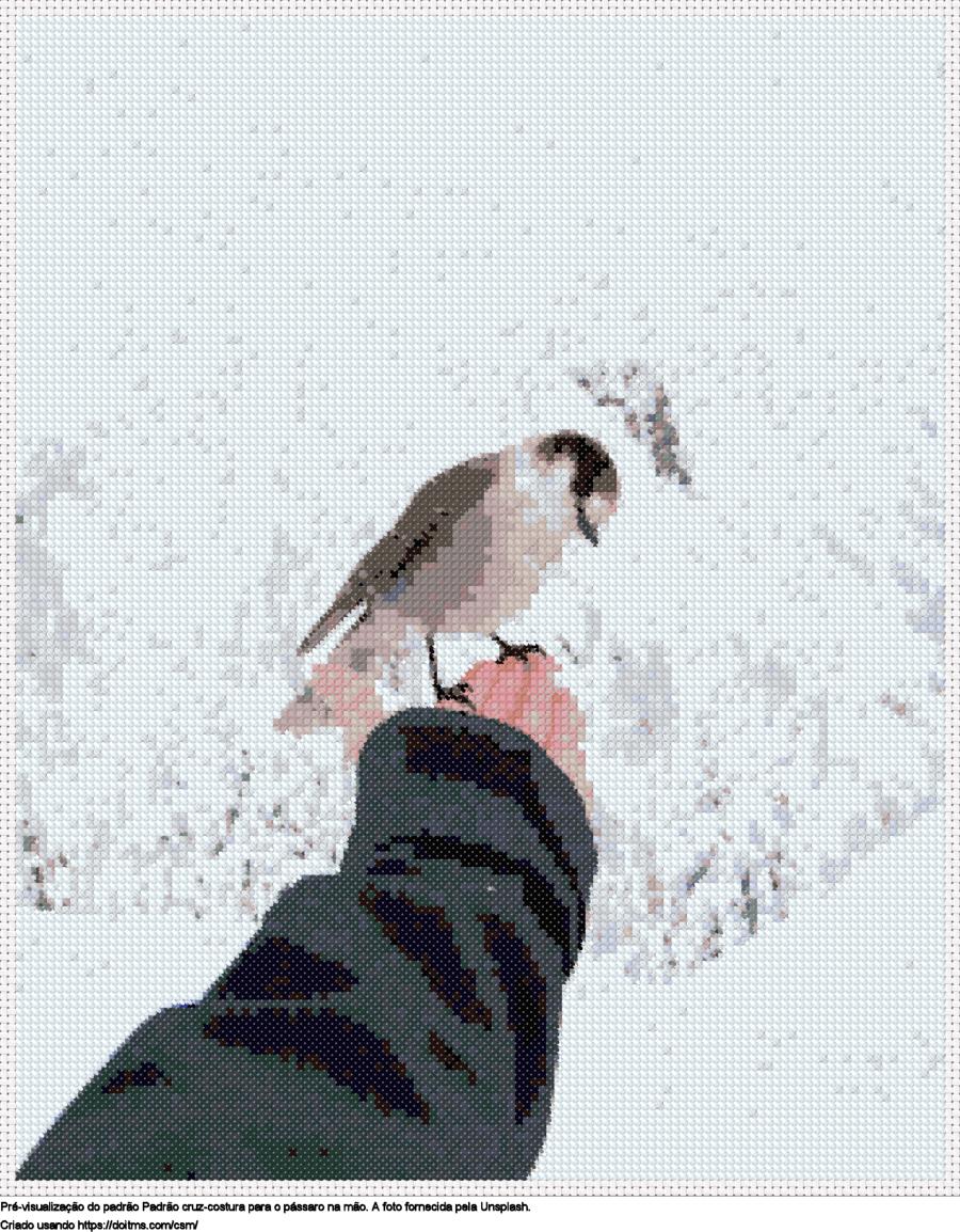 Desenhos O pássaro na mão de ponto-cruz gratuitos