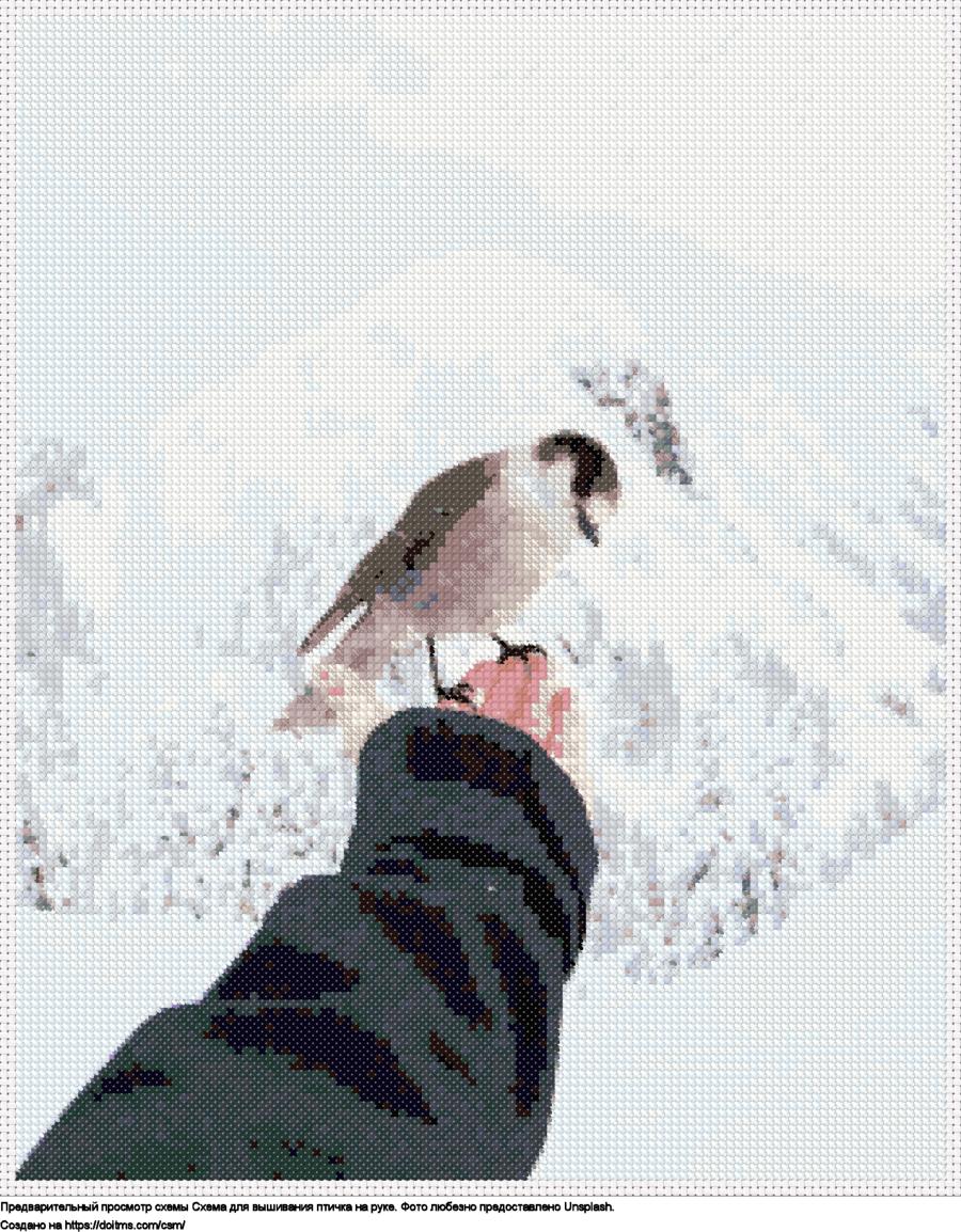 Птичка на руке