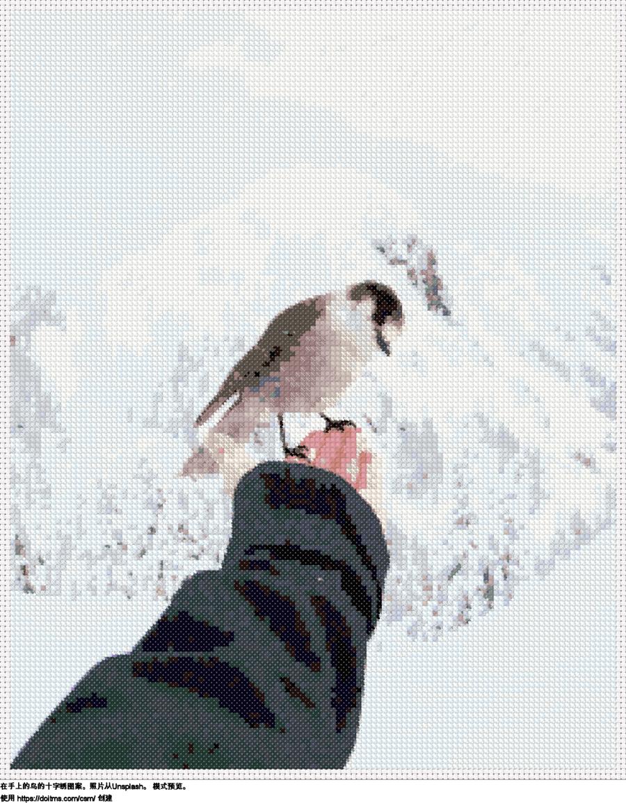 在手上的鸟