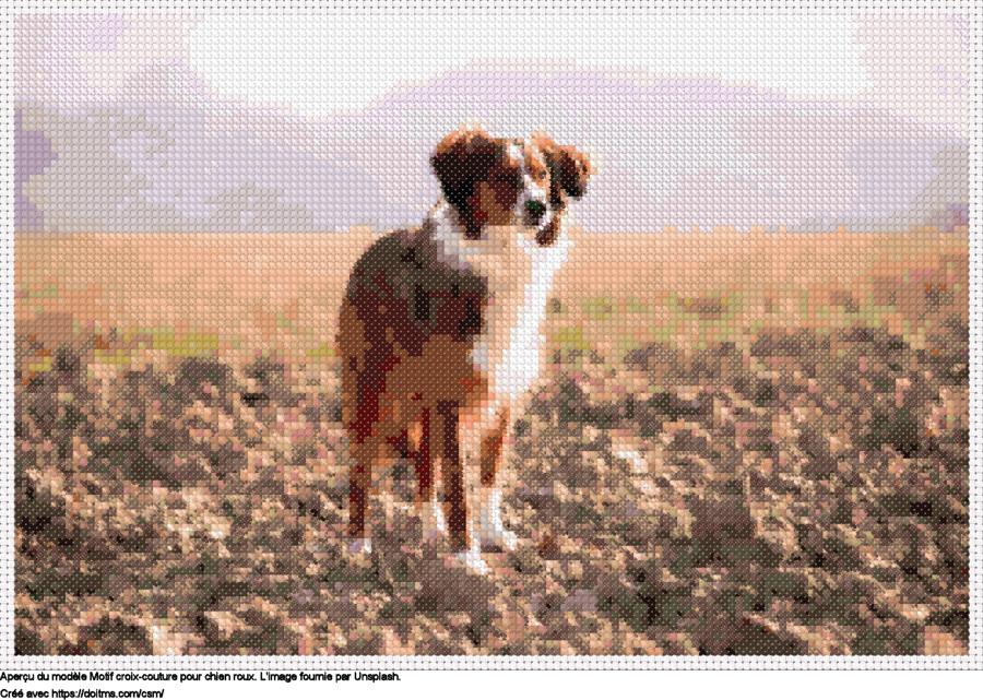 Motif de point de croix chien roux gratuit