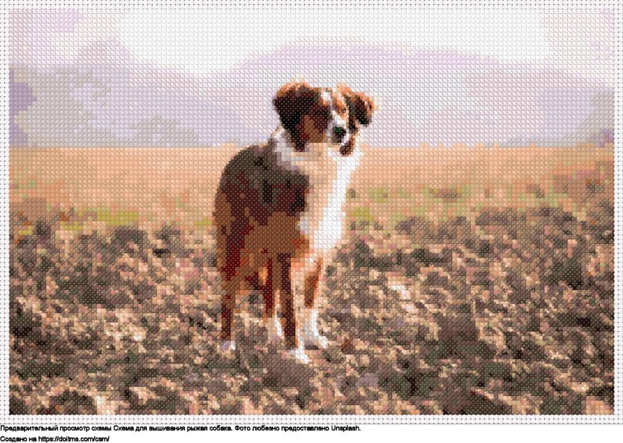 Бесплатная схема Рыжая собака для вышивания крестиком