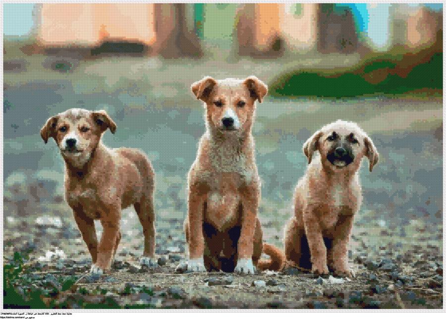 .ثلاثة كلابنمط عبر خياطة ل