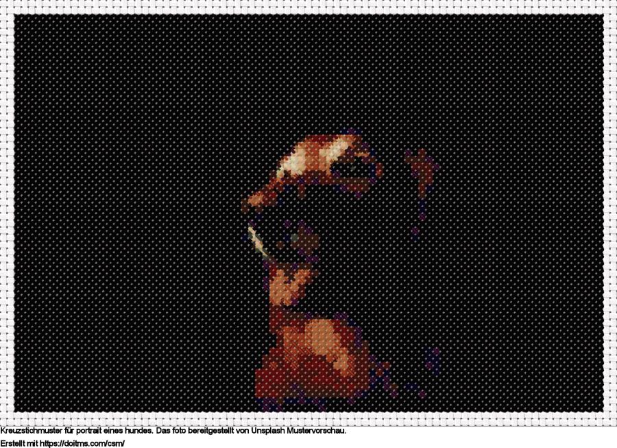 Portrait eines Hundes