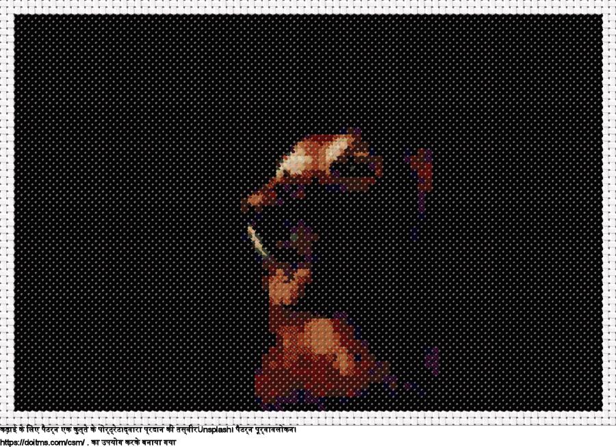 फ्री एक कुत्ते के पोर्ट्रेट क्रॉस-सिलाई डिजाइन