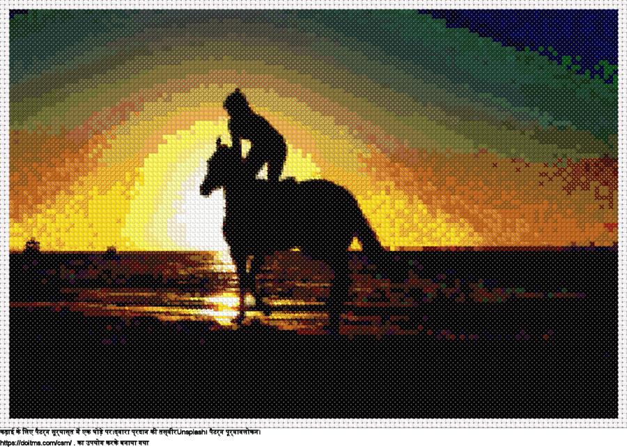 सूर्यास्त में एक घोड़े पर