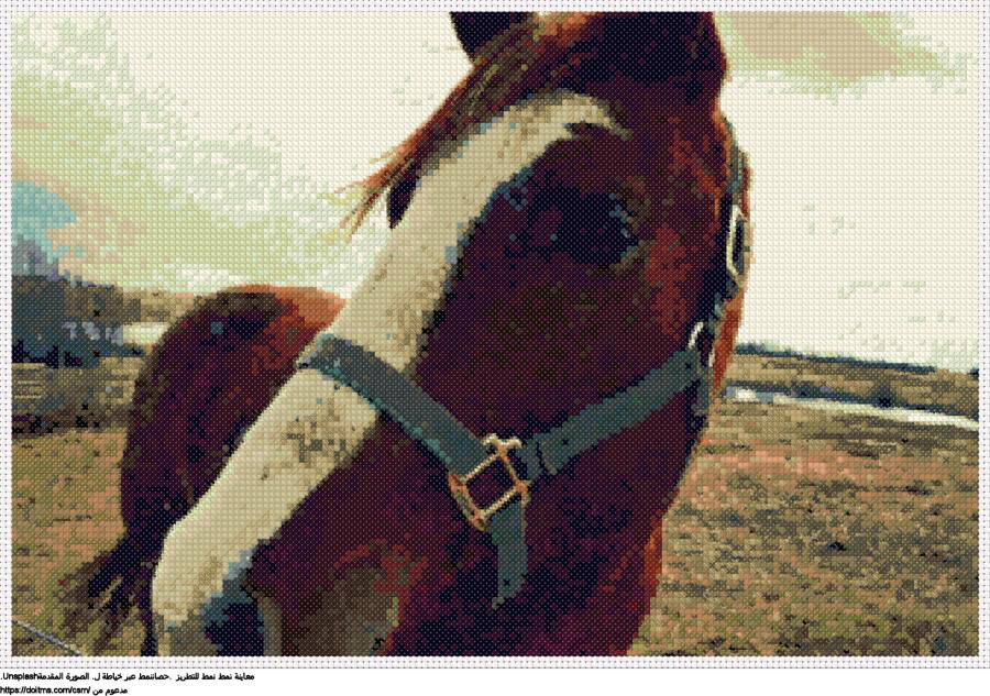 .حصاننمط عبر خياطة ل