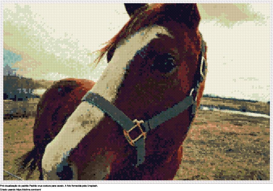 Desenhos Cavalo de ponto-cruz gratuitos