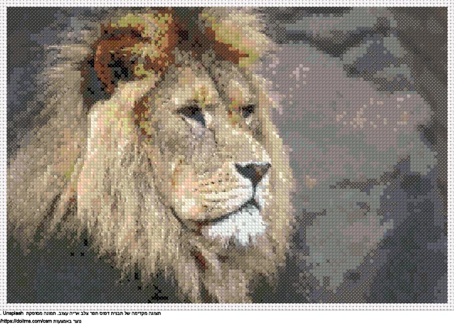 אריה עצוב