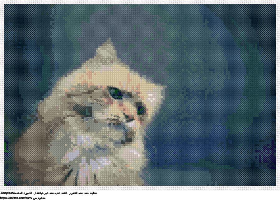 .القط شديدنمط عبر خياطة ل