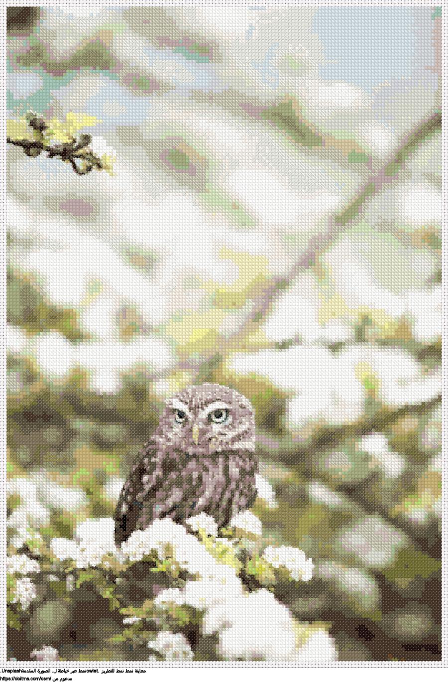 .owletنمط عبر خياطة ل