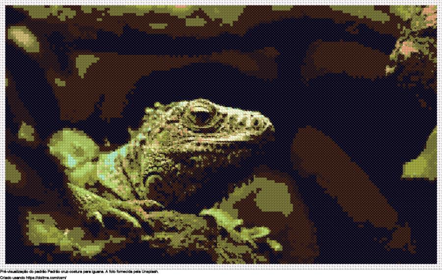 Desenhos Iguana de ponto-cruz gratuitos