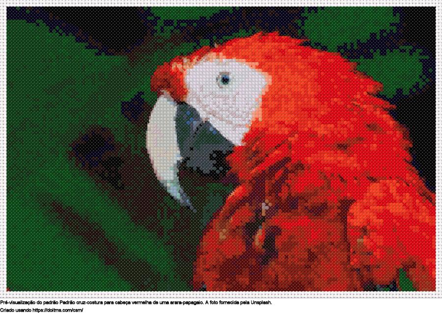 Desenhos papagaio Ara de ponto-cruz gratuitos