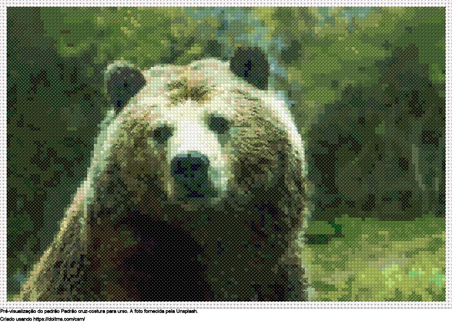Desenhos Urso de ponto-cruz gratuitos