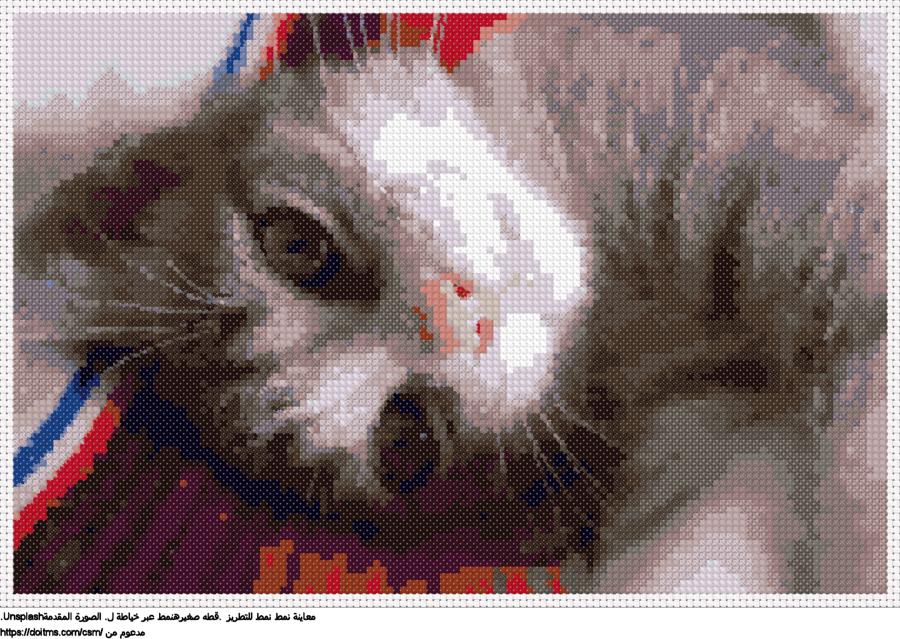 .قطه صغيرهنمط عبر خياطة ل