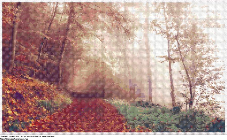 דרך ביער