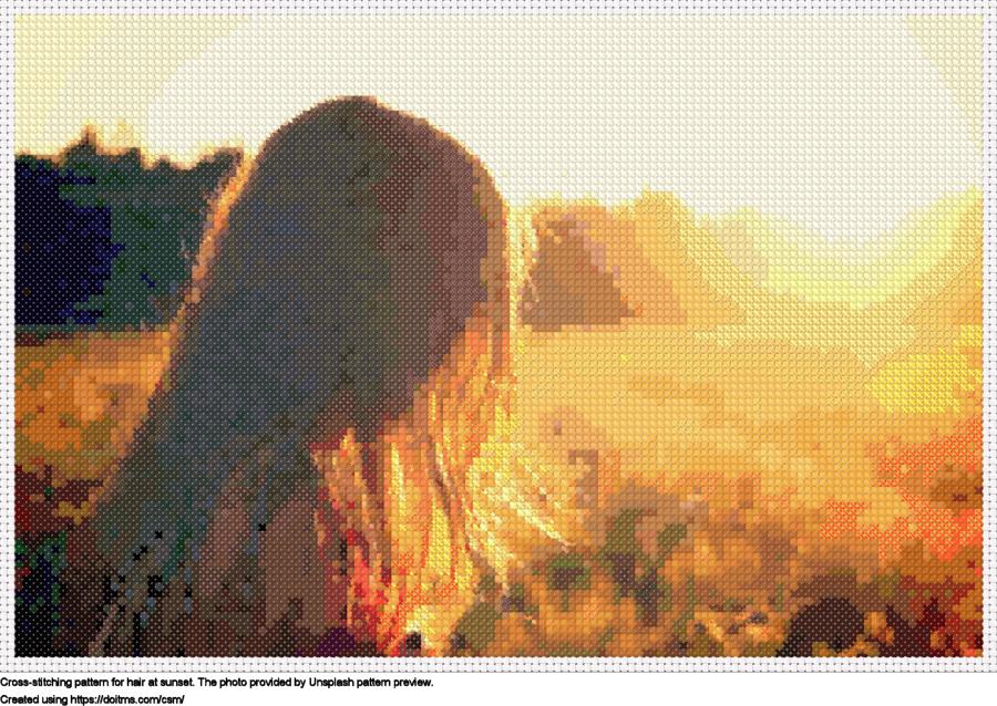 Hair at sunset