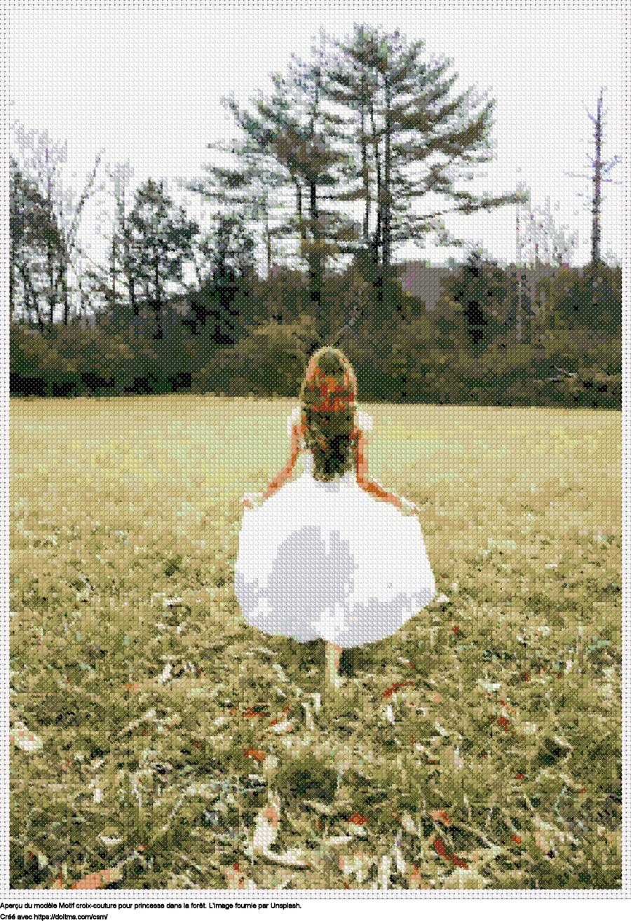 Motif de point de croix Princesse dans la forêt gratuit