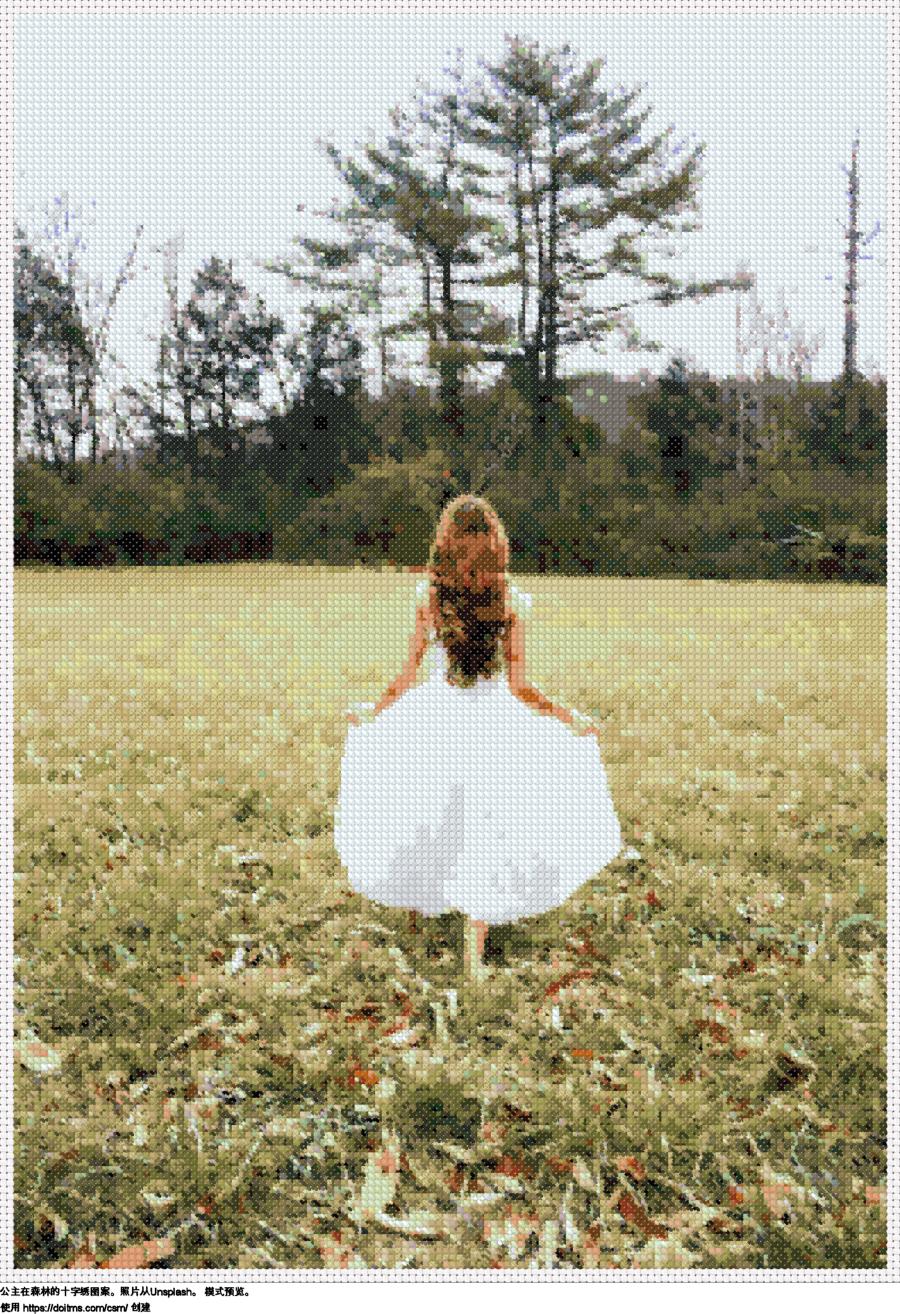 公主在森林