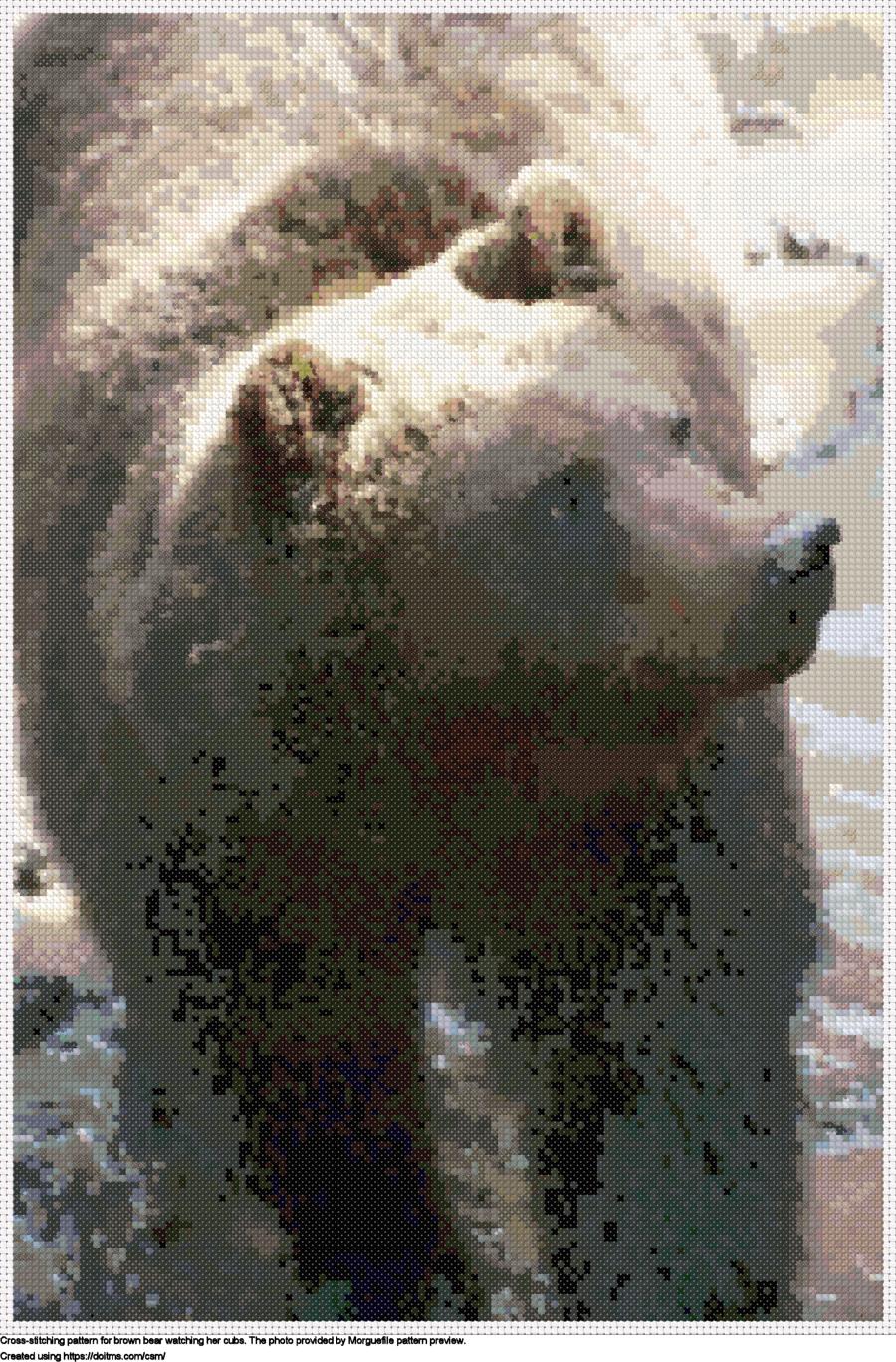 Free Bear cross-stitching design